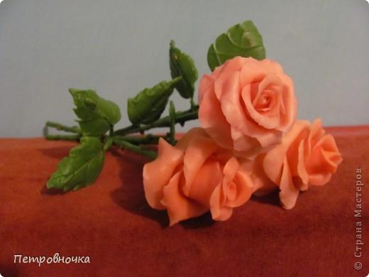 Мои новые розы. Размер настоящих. Соскучилась по своему фарфору. Почти месяц не варила, зато теперь сразу две порции, еще и с коллегой поделилась.  фото 1