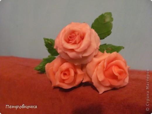 Мои новые розы. Размер настоящих. Соскучилась по своему фарфору. Почти месяц не варила, зато теперь сразу две порции, еще и с коллегой поделилась.  фото 2