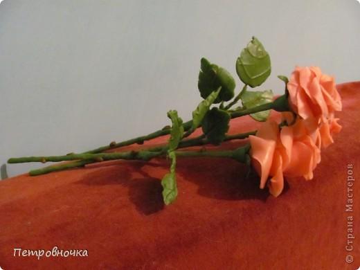 Мои новые розы. Размер настоящих. Соскучилась по своему фарфору. Почти месяц не варила, зато теперь сразу две порции, еще и с коллегой поделилась.  фото 3