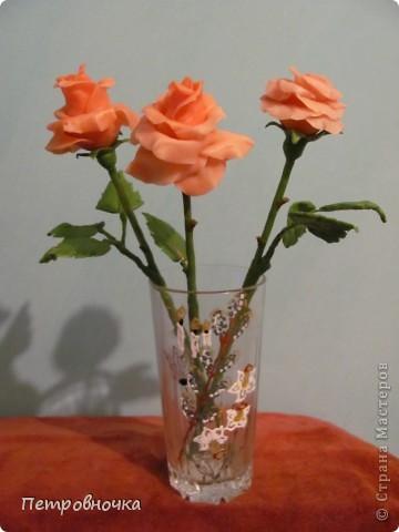 Мои новые розы. Размер настоящих. Соскучилась по своему фарфору. Почти месяц не варила, зато теперь сразу две порции, еще и с коллегой поделилась.  фото 5