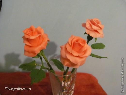 Мои новые розы. Размер настоящих. Соскучилась по своему фарфору. Почти месяц не варила, зато теперь сразу две порции, еще и с коллегой поделилась.  фото 4