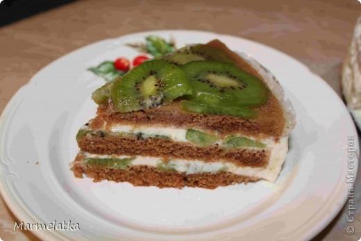 Торт без выпечки с киви фото 2