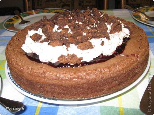 """Вот еще собрала несколько фотографий тортов. Их я делала на разные семейные праздники. Ну ооооочень вкусные! А главное, приготовлены из хороших продуктов, знаешь, что туда положено. Торты в магазине уже лет 5 не покупаем :)  Торт """"Тропиканка"""".  Этот суперский тортик очень хлопотный, но гости были в приятном шоке!  Рецепт взят отсюда - http://forum.hlebopechka.net/index.php?showtopic=2321. фото 7"""
