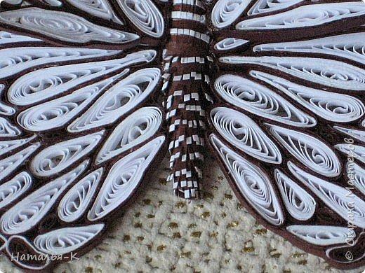 У меня появилась ещё одна бабочка.  Размер 7х8 см. Полоски 1,5 мм. фото 8