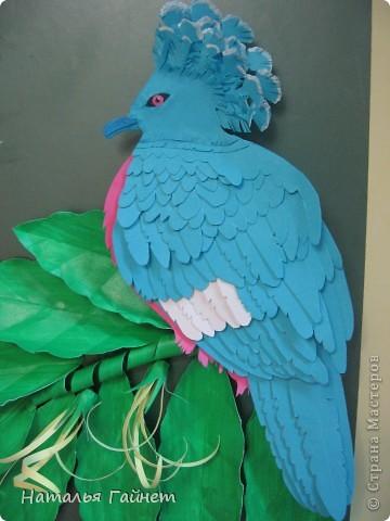Венценосный голубь в листве иланг-иланг. Размер без рамки 21*30см. Такую птицу вырезала первый раз. фото 1