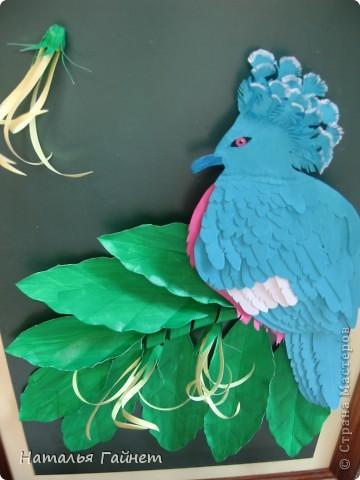 Венценосный голубь в листве иланг-иланг. Размер без рамки 21*30см. Такую птицу вырезала первый раз. фото 6