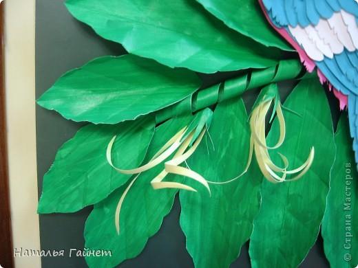 Венценосный голубь в листве иланг-иланг. Размер без рамки 21*30см. Такую птицу вырезала первый раз. фото 10
