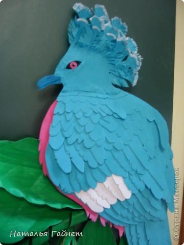 Венценосный голубь в листве иланг-иланг. Размер без рамки 21*30см. Такую птицу вырезала первый раз. фото 8