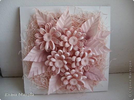 Розовые цветы фото 2