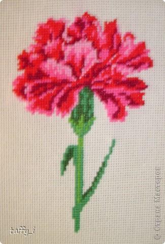 Щенок-почтальон, Искусница, 143 8 цветов. 48*60 крестиков.  11*14 см. Март 2008 года. фото 4