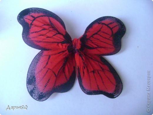 Каркас бабочки делаем из проволоки. Обтягиваем капроном. Капрон может быть или телесный или цветной. Для надёжности скрепляем ниткой.(Лучше перестраховаться) фото 4