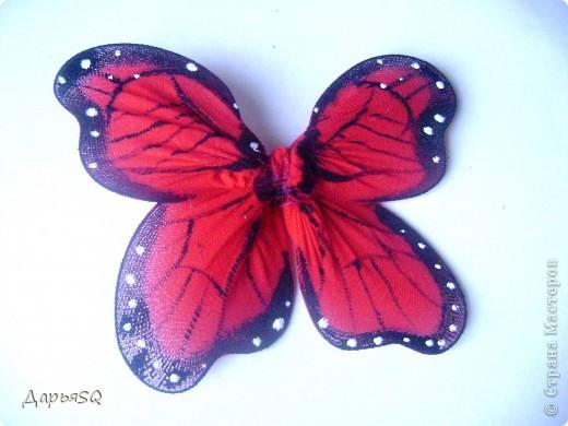 Каркас бабочки делаем из проволоки. Обтягиваем капроном. Капрон может быть или телесный или цветной. Для надёжности скрепляем ниткой.(Лучше перестраховаться) фото 5