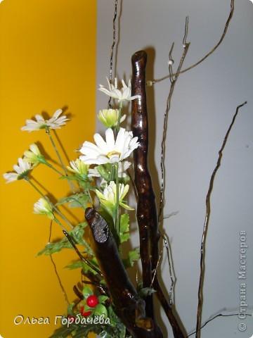 Ягодно-ромашковое лето тёплым солнышком согрето. фото 5