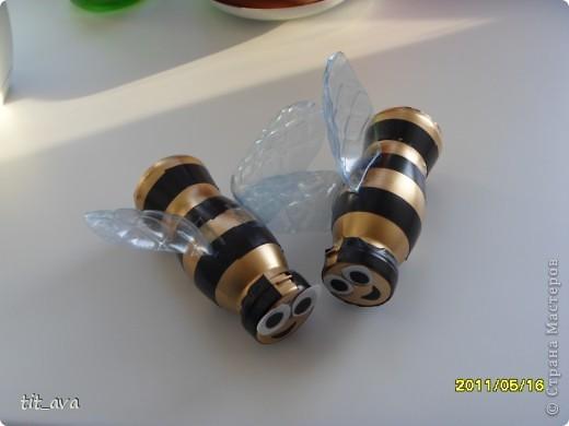 Это были первые пчёлки, поэтому самые аккуратные  фото 1