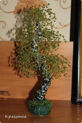 ССЫЛКА НА ЧАСТЬ1: http://stranamasterov.ru/node/199607 Здравствуйте уважаемые мастера и мастерицы! Во второй части наших уроков я бы хотела подробно рассказать как сделать каркас нашей будущей березки. Этот урок, я думаю,  можно будет брать за основу при выполнении других видов деревьев. У нас уже готовы ветви нашего дерева. Их 7 штук. фото 1