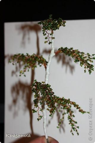 ССЫЛКА НА ЧАСТЬ1: http://stranamasterov.ru/node/199607 Здравствуйте уважаемые мастера и мастерицы! Во второй части наших уроков я бы хотела подробно рассказать как сделать каркас нашей будущей березки. Этот урок, я думаю,  можно будет брать за основу при выполнении других видов деревьев. У нас уже готовы ветви нашего дерева. Их 7 штук. фото 16