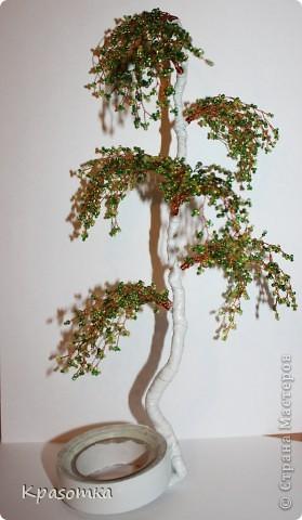 ССЫЛКА НА ЧАСТЬ1: http://stranamasterov.ru/node/199607 Здравствуйте уважаемые мастера и мастерицы! Во второй части наших уроков я бы хотела подробно рассказать как сделать каркас нашей будущей березки. Этот урок, я думаю,  можно будет брать за основу при выполнении других видов деревьев. У нас уже готовы ветви нашего дерева. Их 7 штук. фото 27
