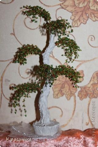 ССЫЛКА НА ЧАСТЬ1: http://stranamasterov.ru/node/199607 Здравствуйте уважаемые мастера и мастерицы! Во второй части наших уроков я бы хотела подробно рассказать как сделать каркас нашей будущей березки. Этот урок, я думаю,  можно будет брать за основу при выполнении других видов деревьев. У нас уже готовы ветви нашего дерева. Их 7 штук. фото 28
