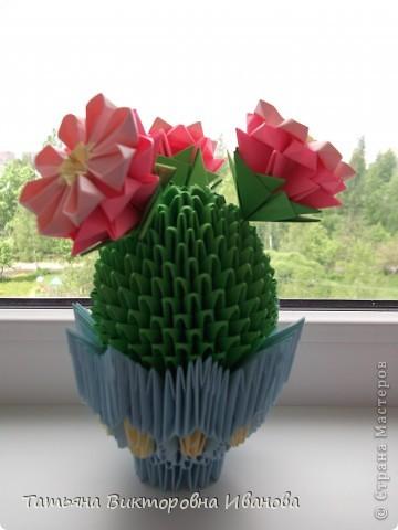 Мне очень нравится, когда цветут кактусы! Какая красота! Давно хотела сделать кактус из модулей, и наконец свою мечту осуществила. Собран он по схеме Татьяны Просняковой. Думаю, что я справилась...