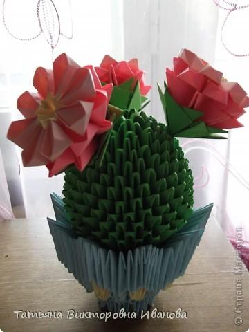 Мне очень нравится, когда цветут кактусы! Какая красота! Давно хотела сделать кактус из модулей, и наконец свою мечту осуществила. Собран он по схеме Татьяны Просняковой. Думаю, что я справилась... фото 2