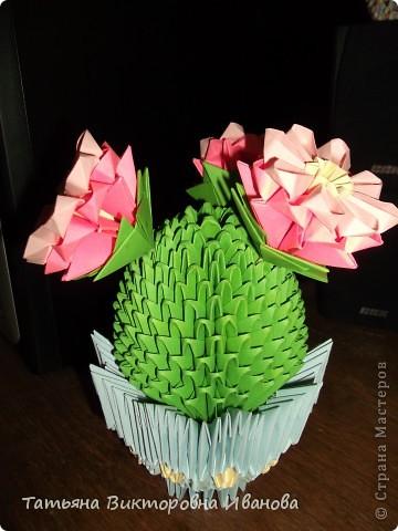 Мне очень нравится, когда цветут кактусы! Какая красота! Давно хотела сделать кактус из модулей, и наконец свою мечту осуществила. Собран он по схеме Татьяны Просняковой. Думаю, что я справилась... фото 3