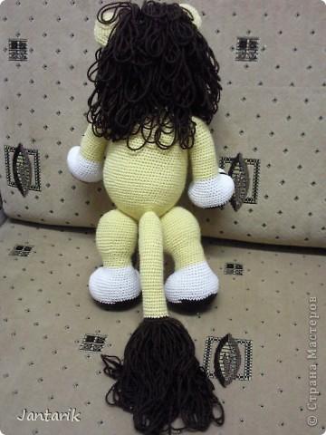 Увидела я у Елены Беловой куклу львёнка и так он мне понравился,что захотелось его связать.Но МК по его изготовлению мне найти не удалось... И тогда я решила всё равно его сделать,так что этот львёнок сделан по фото Елены Беловой,,которая его изготовила по МК AYUVL с сайта Сатилина.Не совсем такой получился,но по-моему хорошенький... фото 3