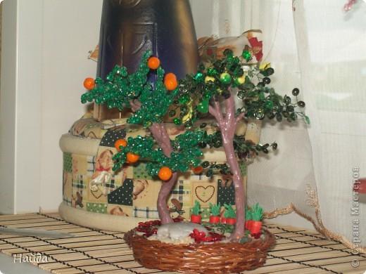 груша и мандариновое дерево,а внизу огородик фото 1