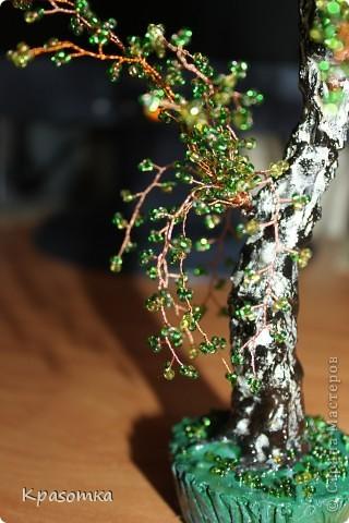 Часть 1. http://stranamasterov.ru/node/199607 Часть 2. http://stranamasterov.ru/node/199628 Часть 3. http://stranamasterov.ru/node/200255 Здравствуйте уважаемые мастера и мастерицы! Продолжаем наши уроки моделирования. Сегодня завершающий этап нашей совместной работы. Мы покрасим наше дерево, покроем лаком и распрямим веточки. фото 26