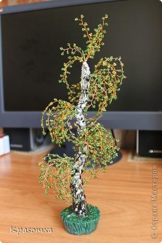 Часть 1. http://stranamasterov.ru/node/199607 Часть 2. http://stranamasterov.ru/node/199628 Часть 3. http://stranamasterov.ru/node/200255 Здравствуйте уважаемые мастера и мастерицы! Продолжаем наши уроки моделирования. Сегодня завершающий этап нашей совместной работы. Мы покрасим наше дерево, покроем лаком и распрямим веточки. фото 28