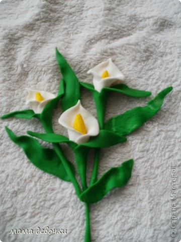 мои любимые розы и пробные каллы! лепила из пластики цветик (запекаемая) и развивашка (самозатвердевающая), заготовки для декора бутылочек. фото 2
