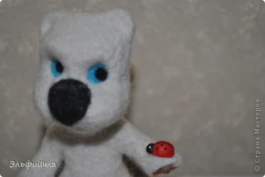 Мишка - малышка. Зачем он так  боится Божью коровку? фото 2