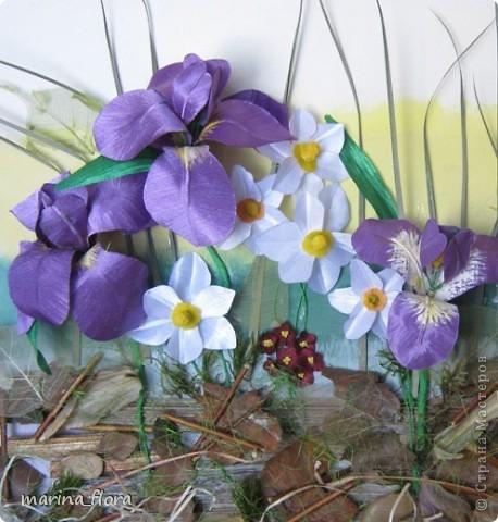 На границе весны и лета  весь  окружающий мир насыщается яркими природными красками, и свежими ароматами. Стремительно меняются картинки цветущего весеннего сада. Одни растения сменяют другие. Самый легкий способ  насладиться всеми этими преобразованиями -  провести  день на природе (в саду, на даче) и посмотреть на цветы,  которые растут вокруг нас. Взгляните:  нарциссы, тюльпаны, ирисы и т.д.  Вот, по-настоящему, момент душевной гармонии! фото 2