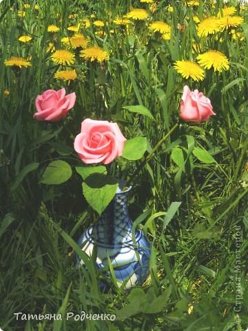 """Предлагаю вашему вниманию розы из ХФ на """"прогулке"""" фото 9"""