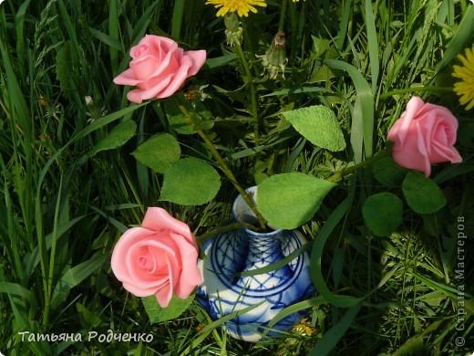"""Предлагаю вашему вниманию розы из ХФ на """"прогулке"""" фото 5"""