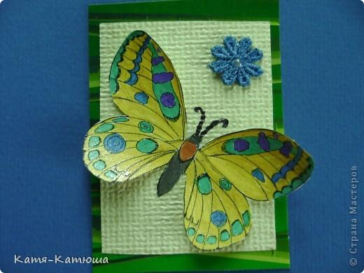 Бабочки раскрашены гелевыми ручками с блёстками. Поэтому не получается сфотографировать хорошо. фото 6