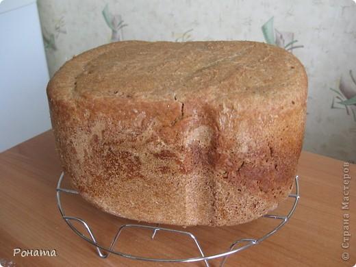 """В прошлом году через некоторое время после покупки хлебопечки возник вопрос: а как испечь хлеб без дрожжей? Был """"перерыт"""" весь интернет, и я начала """"выращивать"""" ржаную закваску. Вот такой ржаной хлебушек получился: фото 1"""