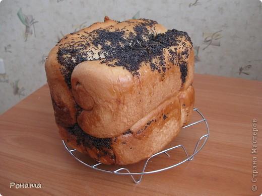 """В прошлом году через некоторое время после покупки хлебопечки возник вопрос: а как испечь хлеб без дрожжей? Был """"перерыт"""" весь интернет, и я начала """"выращивать"""" ржаную закваску. Вот такой ржаной хлебушек получился: фото 5"""