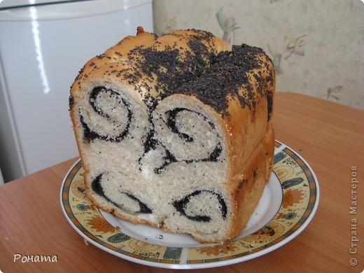 """В прошлом году через некоторое время после покупки хлебопечки возник вопрос: а как испечь хлеб без дрожжей? Был """"перерыт"""" весь интернет, и я начала """"выращивать"""" ржаную закваску. Вот такой ржаной хлебушек получился: фото 6"""