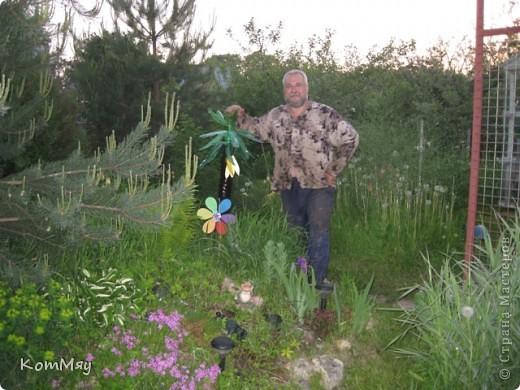 В эти выходные я превратила свою альпийскую горку в Остров Лягушек. Лягушки разных мастей (керамические, пластиковые, резиновые) уже давно обитали на горке, а после того, как мы поставили на однном из её склонов пальму из пластиковых бутылок, горку пришлось переименовать в Остров Лягушек.  фото 4