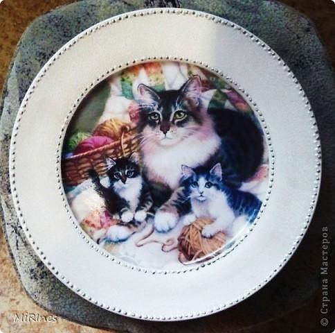 Милые котята!!! Моя любимая тема с кошками! Распечатка акрил,иногда кракелюр,контур,лак спрей. фото 6