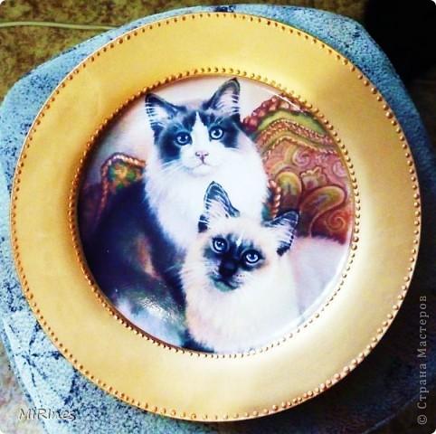 Милые котята!!! Моя любимая тема с кошками! Распечатка акрил,иногда кракелюр,контур,лак спрей. фото 7