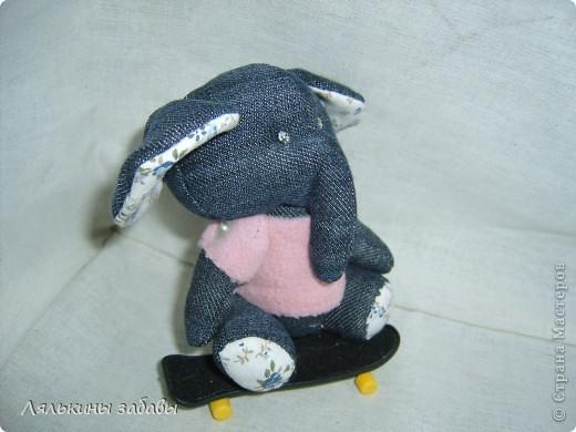 Слоняшка очень спортивный. фото 10