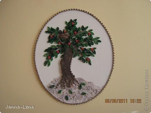Наше дерево. фото 1