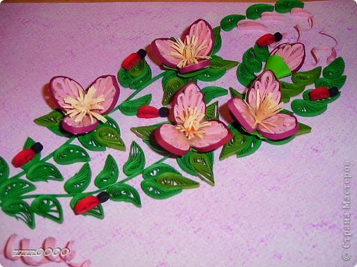 цветочки. фото 1