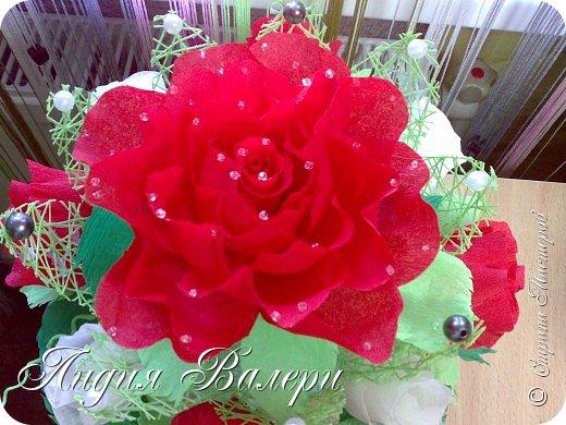 Розы счастья! фото 4