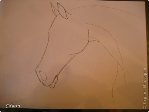 МК голова лошади фото 5