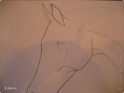 МК голова лошади фото 6