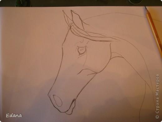 МК голова лошади фото 9
