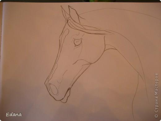 МК голова лошади фото 10