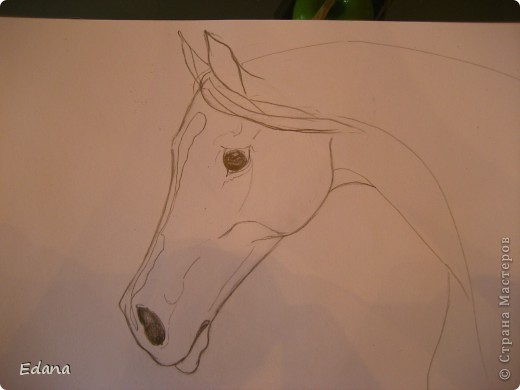МК голова лошади фото 11